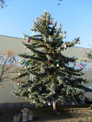 Vorschaubild zur Meldung: Zum 2. Advent: Erstmalig auch ein Weihnachtsbaum für Fürstenwalde Nord