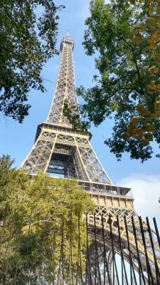 Vorschaubild zur Meldung: Oh là là - Frankreichaustausch 2018