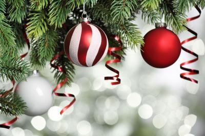 Vorschaubild zur Meldung: Weihnachtspause beim TSV Schleswig