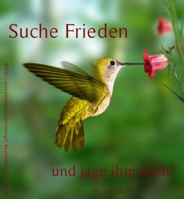 Kolibri Jahreslosung 2019