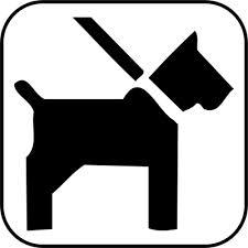 Vorschaubild zur Meldung: Anleinpflicht für Hunde