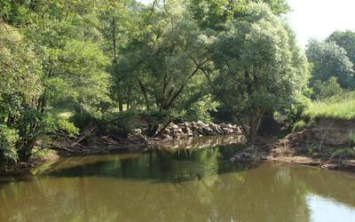 Foto zur Meldung: DKV-Kampagne gegen Flusssperrung wegen umstürzender Bäume
