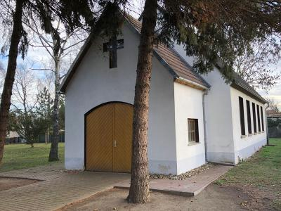 Foto zur Meldung: Krähenplage Friedhof Hakeborn