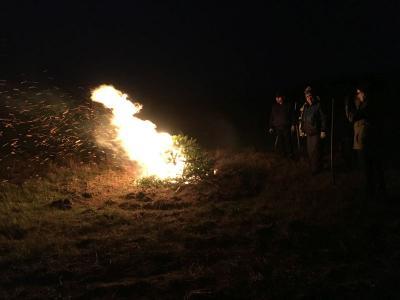 Foto zur Meldung: Weihnachtsbaumverbrennung in Mixdorf
