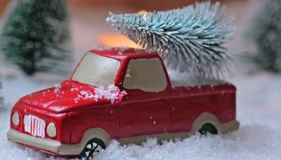 Vorschaubild zur Meldung: Weihnachtbaum - Entsorgung - Malborn