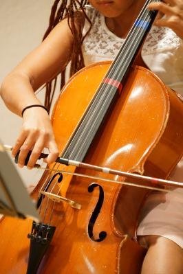 Foto zur Meldung: Musikschule aktiv