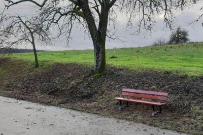 Vorschaubild zur Meldung: Neue Sitzbank am Neckargemünder Weg