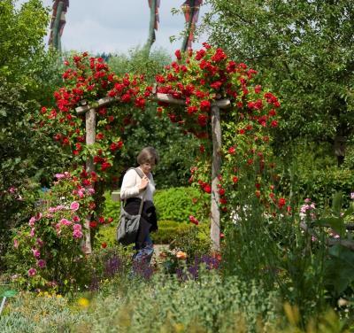 Wangeliner Kräutergarten