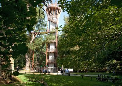 Vorschaubild zur Meldung: Faszination Baumkronenpfad im Ivenacker Tierpark - Waldgebiet des Jahres 2020