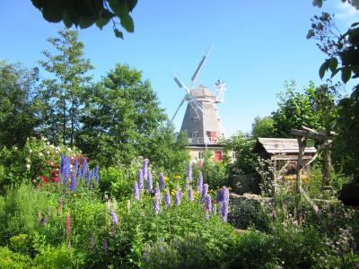 Müllergarten in Stralsund