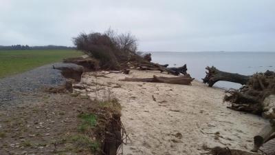 Foto zur Meldung: Schwere Schäden am Küstenradweg nach Sturmfluten Anfang Januar 2019