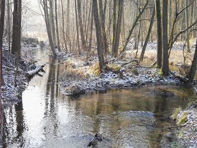 Foto zur Meldung: Winterwanderung