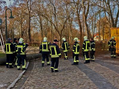 Foto zu Meldung: Vorarbeiten Kreisverkehr Westeregeln