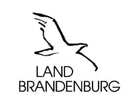 Foto zur Meldung: Brandenburger Kompass für die digitale Zukunft