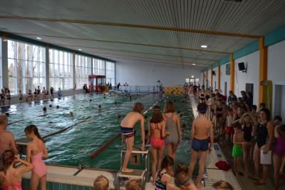 Vorschaubild zur Meldung: 22. Kinder- und Jugendsportspiele im Landkreis OSL - Schwimmen