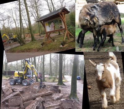 Foto zur Meldung: Informationen zum Tierpark im Monat Januar 2019