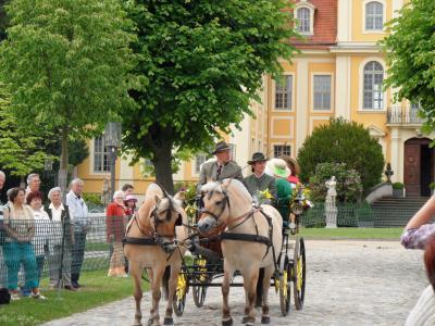 Foto zur Meldung: 21. Rammenauer Schlossrundfahrt am 02.06.2019