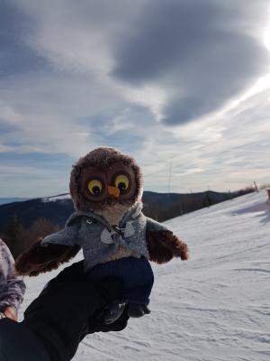 Vorschaubild zur Meldung: Bericht und Video zur Skifreizeit im Januar