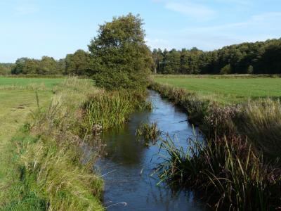 Foto zur Meldung: Neue Befahrungsregelungen an niedersächsischen Gewässern