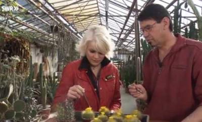 Vorschaubild zur Meldung: TV Besuch in der Gärtnerei