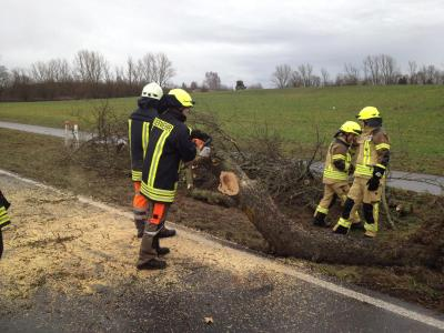 Vorschaubild zur Meldung: H:Natur - Bäume versperren die Straße