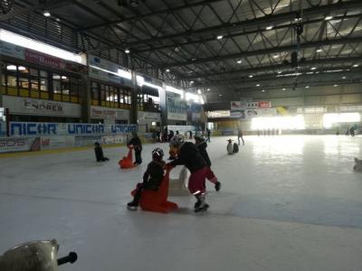 Vorschaubild zur Meldung: Eislauftag