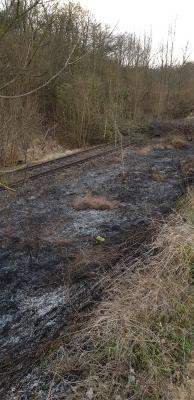Vorschaubild zur Meldung: Flächenbrand zwischen Flonheim und Bornheim