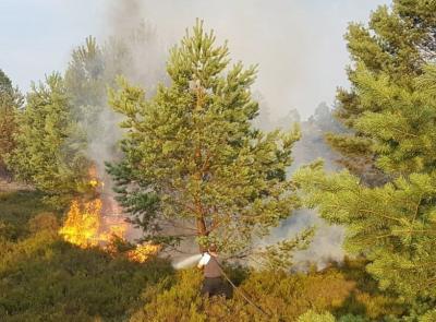 Vorschaubild zur Meldung: Kreisbrandmeister und Forstbehörden laden zur Informationsveranstaltung