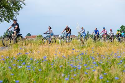 Foto zu Meldung: Natur und Kultur per Rad auf der RadKulTour 2019 entdecken