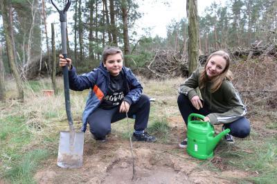 """Foto zur Meldung: Calauer Schüler pflanzen """"Baum des Jahres"""" – und mehr"""