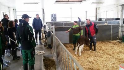 Foto zur Meldung: Infoveranstaltung zum sicheren und stressfreien Umgang mit Rindern