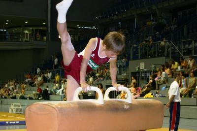 Bei den 5. Landesjugendspielen im Jahr 2005 wetteiferten die Turner vor großer Kulisse in der damaligen Bördelandhalle.