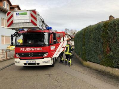 Vorschaubild zur Meldung: Einsatz Nr. 18 - Unterstützung Rettungsdienst mit der Drehleiter in Bammental