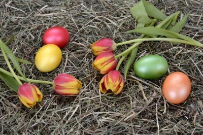 Vorschaubild zur Meldung: Information des AZV über die Verschiebung der Abfuhrtermine für Hausmüll und Bioabfall anlässlich des Osterfestes