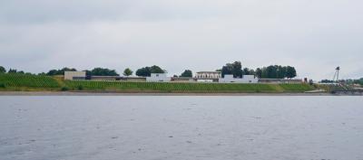 Foto der IBA-Terrassen, des Weinberges und der Seebrücke von der Seeseite aus