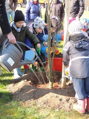 Foto zur Meldung: Woche des Baumes