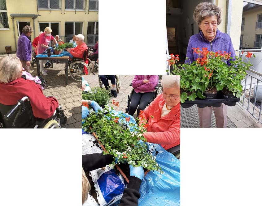 pflanzkaesten_pro-seniore-rosental-graefenroda-gemeinde-geratal