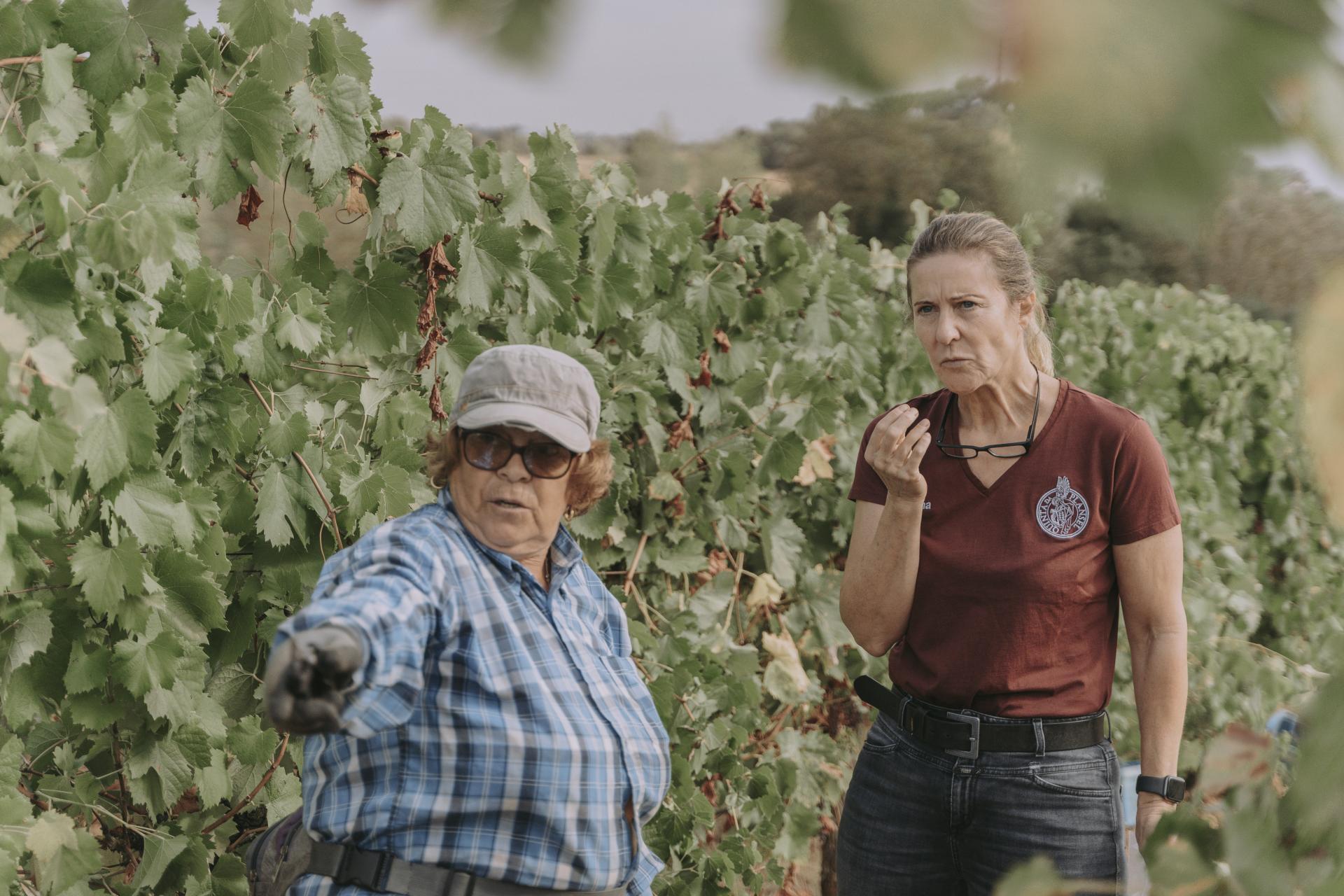 Dorina Lindemann in den Weinbergen der Quinta da Plansel