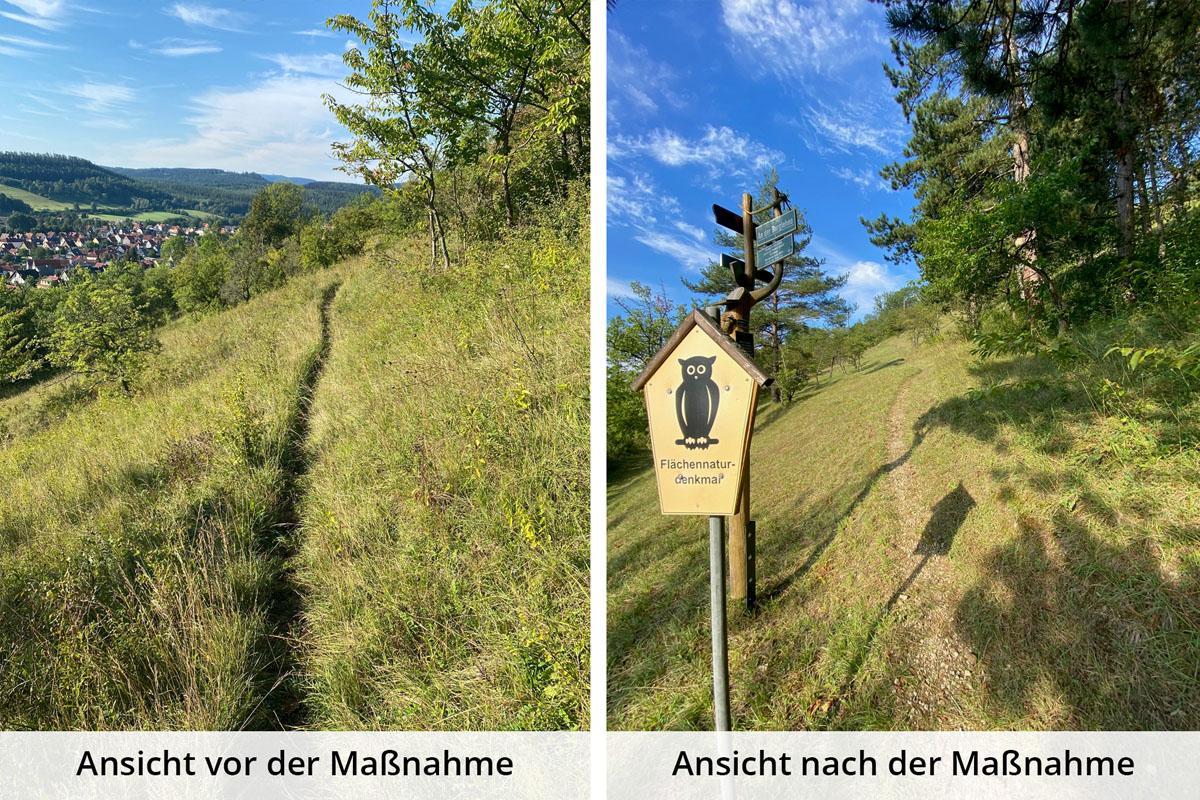 gemeinde-geratal-kooperation-mit-naturparkmeisterei-thueringer-wald_05