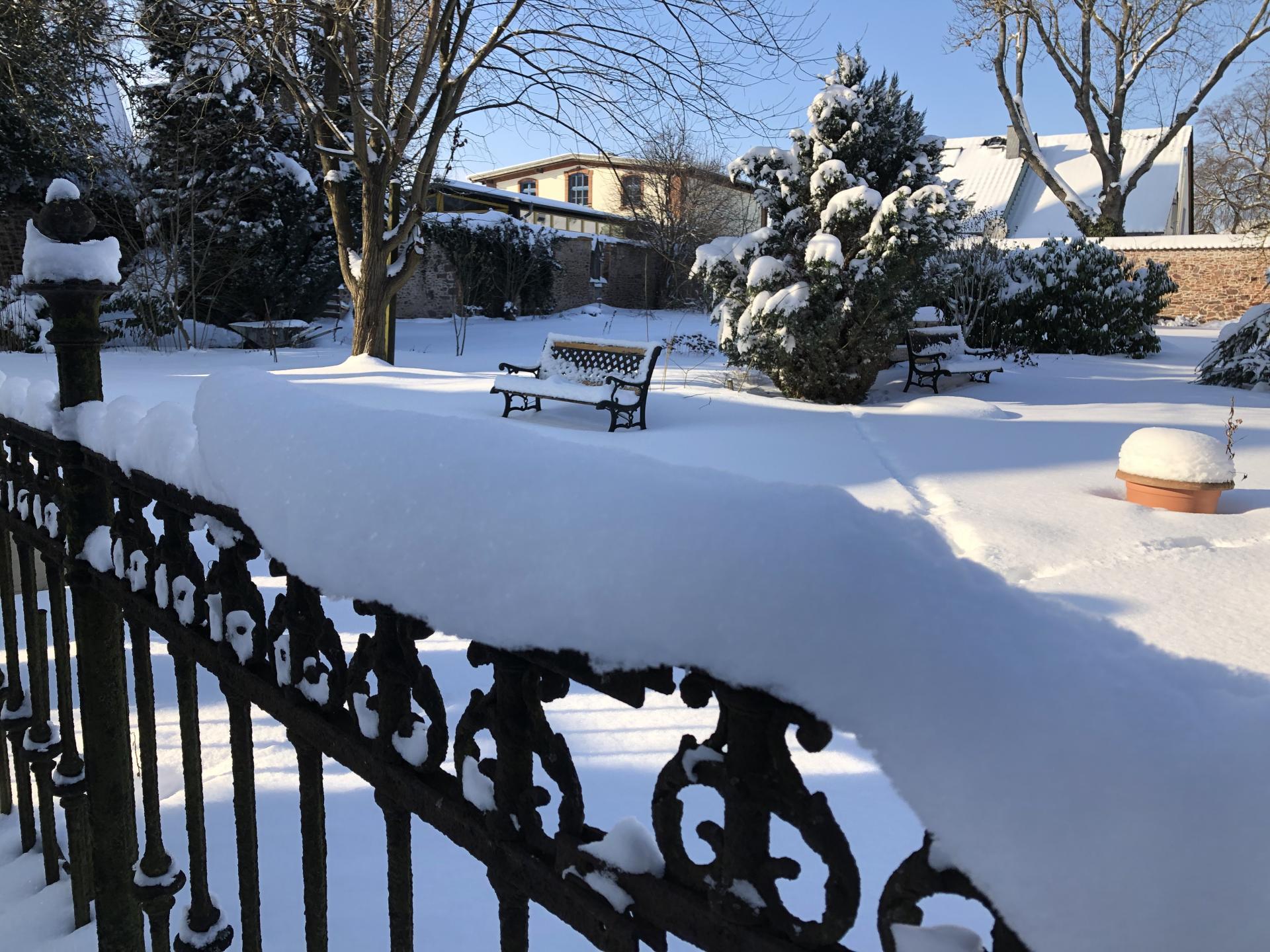 Garten im Winter_2