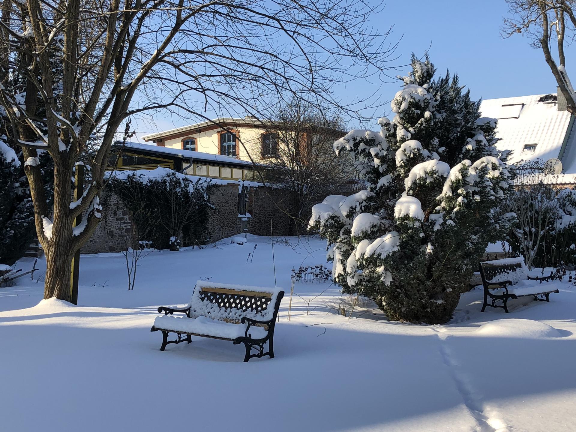 Garten im Winter_3