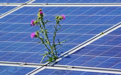 Foto zur Meldung: Mit Bürgerenergie weiter in die Energiezukunft