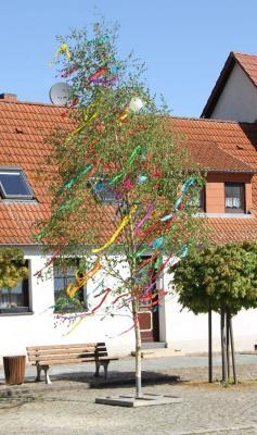 Foto zur Meldung: Aufstellen und Schmücken des Maibaums