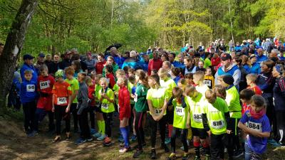 Foto zur Meldung: 17. EURWASSER-Waldlauf in Laage - toller Laufsport für alle
