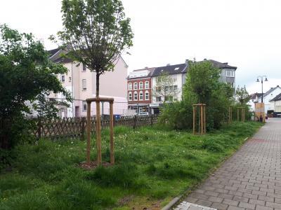 """Baumbestand Zuwegung """"Am Emscherpark"""""""