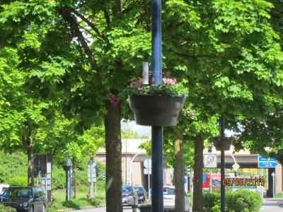 Foto zur Meldung: Blumenampeln an Straßenlaternen