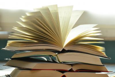 Vorschaubild zur Meldung: Lesung am 22.05. in der Bücherei Nauheim - Elektroschock