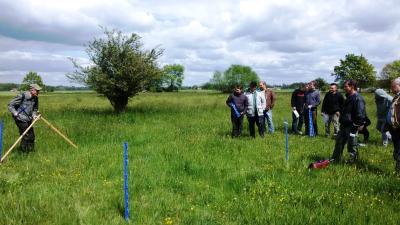 Foto zur Meldung: Pflanzen-Know-how rund ums Grünland - 2. Grünlandtag in Südbrandenburg