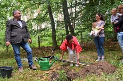 Stadt Perleberg, 2018   Bürgermeisterin Jura pflanzt gemeinsam mit Tierparleiter Niesler und Familien den Baum des jahres 2017