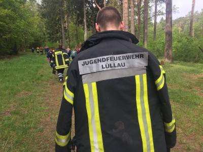 Bild der Meldung: Hanstedter Feuerwehrmarsch 2019